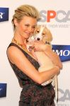 Celebrities Wonder 23423134_amy-smart-pet-armor_4.jpg
