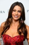 Celebrities Wonder 96221299_glamour-women-of-the-year_Sofia Vergara 2.jpg