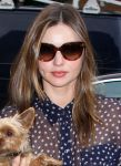 Celebrities Wonder 70545360_miranda-kerr-dog_4.jpg