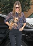 Celebrities Wonder 8373675_miranda-kerr-dog_7.jpg