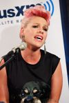 Celebrities Wonder 73350049_pink-SiriusXM_3.jpg
