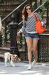 Celebrities Wonder 10303409_liv-tyler-dog_4.jpg