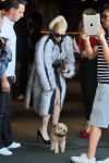 Celebrities Wonder 24048357_lady-gaga-sofia_3.jpg