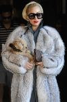 Celebrities Wonder 59862483_lady-gaga-sofia_5.jpg