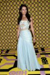 Celebrities Wonder 79450956_lucy-liu-emmy_3.jpg