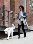 Celebrities Wonder 42355786_olivia-wilde-dog_4.jpg