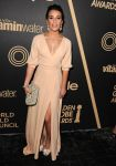 Celebrities Wonder 78952910_HFPA-inStyle-Miss-Golden-Globe-Party_Lea Michele 1.jpg