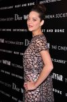 Celebrities Wonder 88904572_mairon-cotillard-rust-and-bone_6.JPG