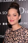 Celebrities Wonder 94518695_mairon-cotillard-rust-and-bone_8.JPG