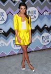 Celebrities Wonder 7321911_fox-all-star-party_Lea Michele 1.jpg