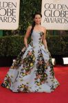 Celebrities Wonder 80831477_lucy-liu-2013-golden-globe_1.jpg