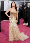 Celebrities Wonder 33884777_catherine-zeta-jones-2013-oscar_1.jpg