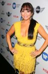 Celebrities Wonder 54853300_Warner-Music-Group-2013-Grammy-Celebration_Cheryl Burke 2.jpg