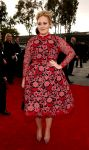 Celebrities Wonder 66663873_adele-grammy-2013_3.jpg