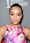 Celebrities Wonder 97465583_2013-Costume-Designers-Guild-Awards_Ashley Madekwe 2.jpg