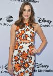 Celebrities Wonder 2648823_Disney-upfront-2013_2.jpg