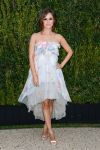 Celebrities Wonder 14933711_CHANEL-Dinner-For-NRDC_1.jpg