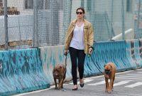 Celebrities Wonder 36805153_jessica-biel-walking-her-dogs_7.jpg