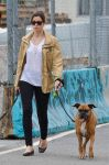Celebrities Wonder 3800064_jessica-biel-walking-her-dogs_2.jpg