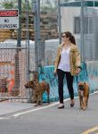 Celebrities Wonder 61179077_jessica-biel-walking-her-dogs_1.jpg