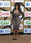 Celebrities Wonder 28746702_CW-CBS-Showtime-2013-Summer-TCA-Party_1.jpg