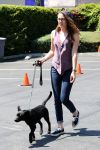 Celebrities Wonder 4699529_kristen-stewart-dog_2.jpg