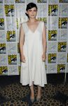 Celebrities Wonder 70415184_Once-Upon-a-Time-panel-during-2013-Comic-Con_1.JPG