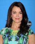Celebrities Wonder 29438211_Disney-ABC-TCA-Party_Bellamy Young 2.JPG