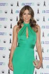 Celebrities Wonder 41537064_elizabeth-hurley-Comparethemarket-com-launch_6.jpg