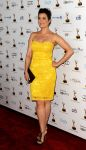 Celebrities Wonder 13723636_65th-Primetime-Emmy-Awards-Performer-Nominee-Reception_Bellamy Young 1.jpg