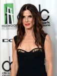 Celebrities Wonder 68417105_2013-hollywood-film-awards_Sandra Bullock 2.JPG