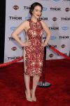 Celebrities Wonder 13574739_Thor-The-Dark-World-premiere-Hollywood_2.JPG