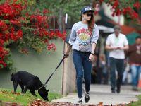 Celebrities Wonder 5170837_kristen-stewart-walking-dog_8.jpg