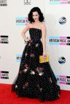 Celebrities Wonder 52661442_katy-perry-2013-amas-red-carpet_1.jpg