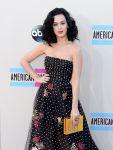 Celebrities Wonder 91680952_katy-perry-2013-amas-red-carpet_4.jpg