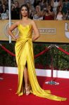 Celebrities Wonder 18409009_camila-alves-20th-sag-awards_2.jpg
