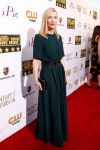 Celebrities Wonder 33805259_cate-blanchett-2014-critics-choice-awards_1.jpg