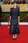 Celebrities Wonder 37720992_amanda-peet-sag-2014_1.jpg