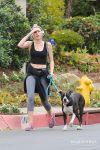 Celebrities Wonder 52821043_miley-cyrus-walking-dog_1.jpg