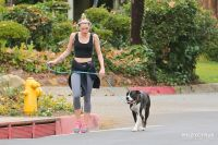 Celebrities Wonder 84630688_miley-cyrus-walking-dog_4.jpg