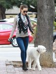 Celebrities Wonder 88956663_olivia-wilde-walking-dog_5.jpg