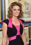 Celebrities Wonder 91183324_2014-writers-guild-awards_Stana Katic 2.jpg
