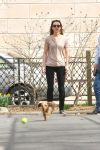 Celebrities Wonder 27856433_leighton-meester-dog_5.jpg