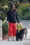 Celebrities Wonder 50750902_pregnant-mila-kunis-dogs_2.jpg