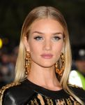 Celebrities Wonder 52528604_rosie-huntington-met-gala-2014_4.jpg