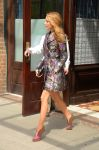 Celebrities Wonder 54002485_blake-lively-hotel_2.jpg