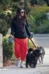Celebrities Wonder 59172865_pregnant-mila-kunis-dogs_1.jpg