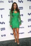 Celebrities Wonder 948654_2014-NBCUniversal-Cable-Entertainment-Upfronts_Elizabeth Hurley 1.jpg