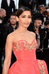Celebrities Wonder 95879257_The-Homesman-Premiere-Cannes_Freida Pinto 3.jpg