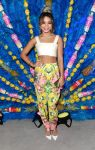 Celebrities Wonder 83844004_SVEDKA-Summer-Samba_5.JPG